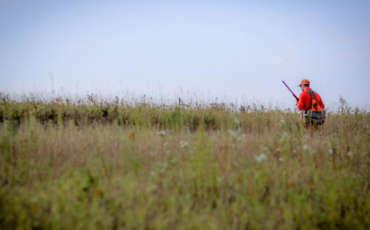Band of Brothers Pheasant Shoot