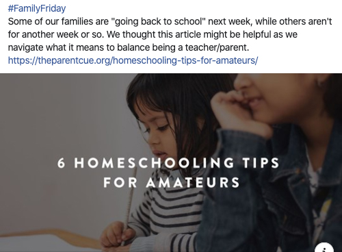 Article: 6 Homeschooling Tips for Amateurs